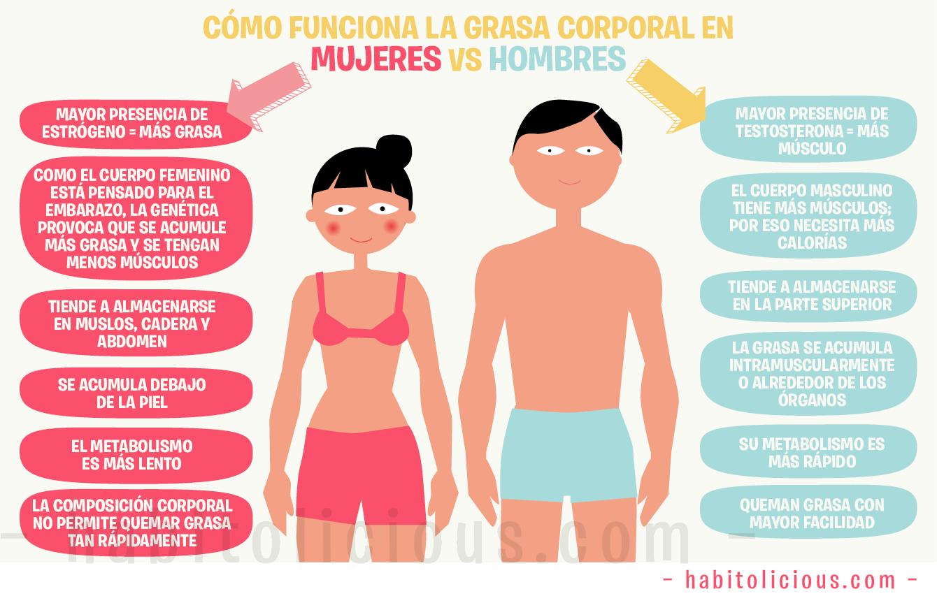 Alcachofa ayudas para bajar de peso rapido